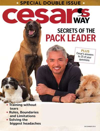 Cesar's Way Magazine Subscription Canada