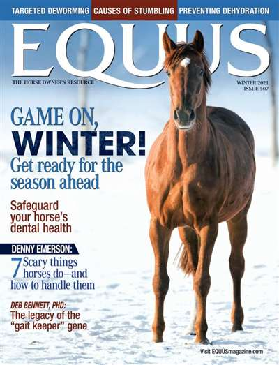 Equus Magazine Subscription Canada