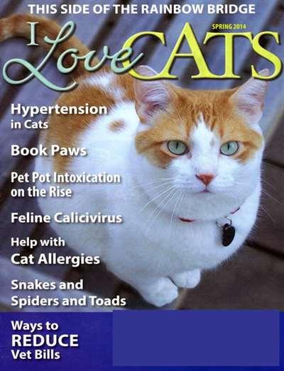 I Love Cats Magazine Subscription Canada