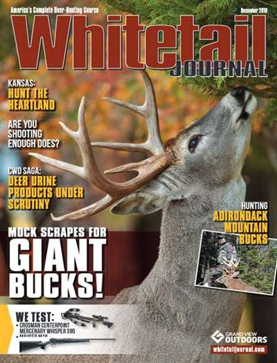 Whitetail Journal Magazine Subscription Canada