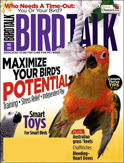 Bird Talk Magazine Subscription Canada