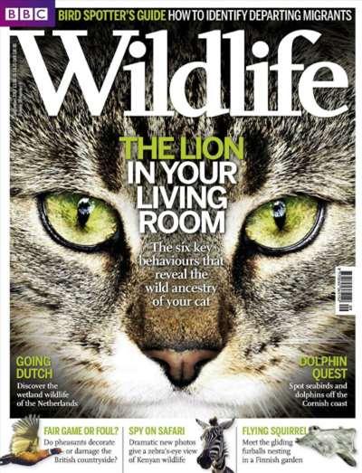 BBC Wildlife Magazine Subscription Canada