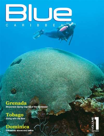 Blue Caribbean Magazine Subscription