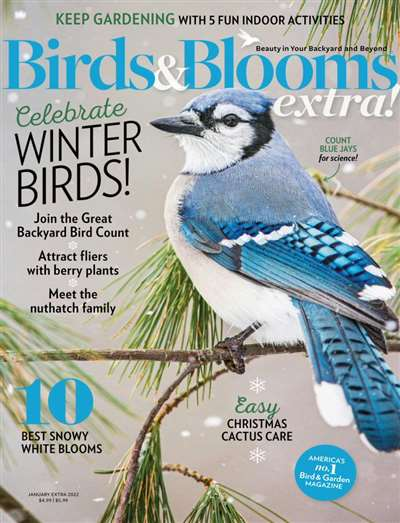 Birds & Bloom Extra Magazine Subscription