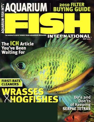 Aquarium Fish Magazine Subscription Canada